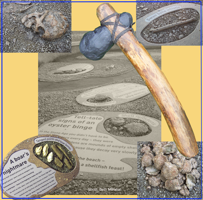 Hands-on replica artefacts, cast in GRP and set into a 5m x 6m sand/gravel pit; to be 'unearthed' and discovered by children (Wildfowl and Wetlands Trust, Castle Espie).
