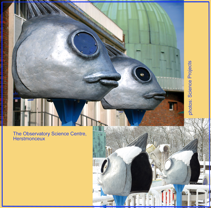 Large scale heads for viewing the world through fish eyes (Science Projects).